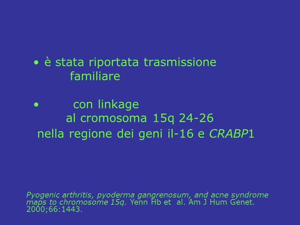 è stata riportata trasmissione familiare con linkage al cromosoma 15q 24-26 nella regione dei geni il-16 e CRABP1 Pyogenic arthritis, pyoderma gangrenosum, and acne syndrome maps to chromosome 15q.