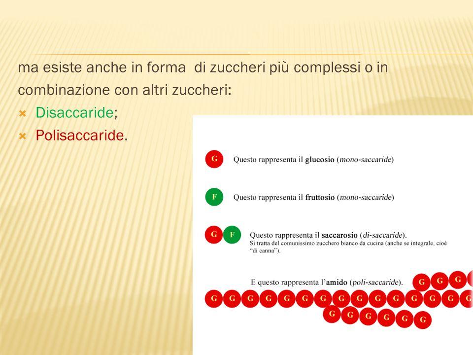 ma esiste anche in forma di zuccheri più complessi o in combinazione con altri zuccheri: Disaccaride; Polisaccaride.