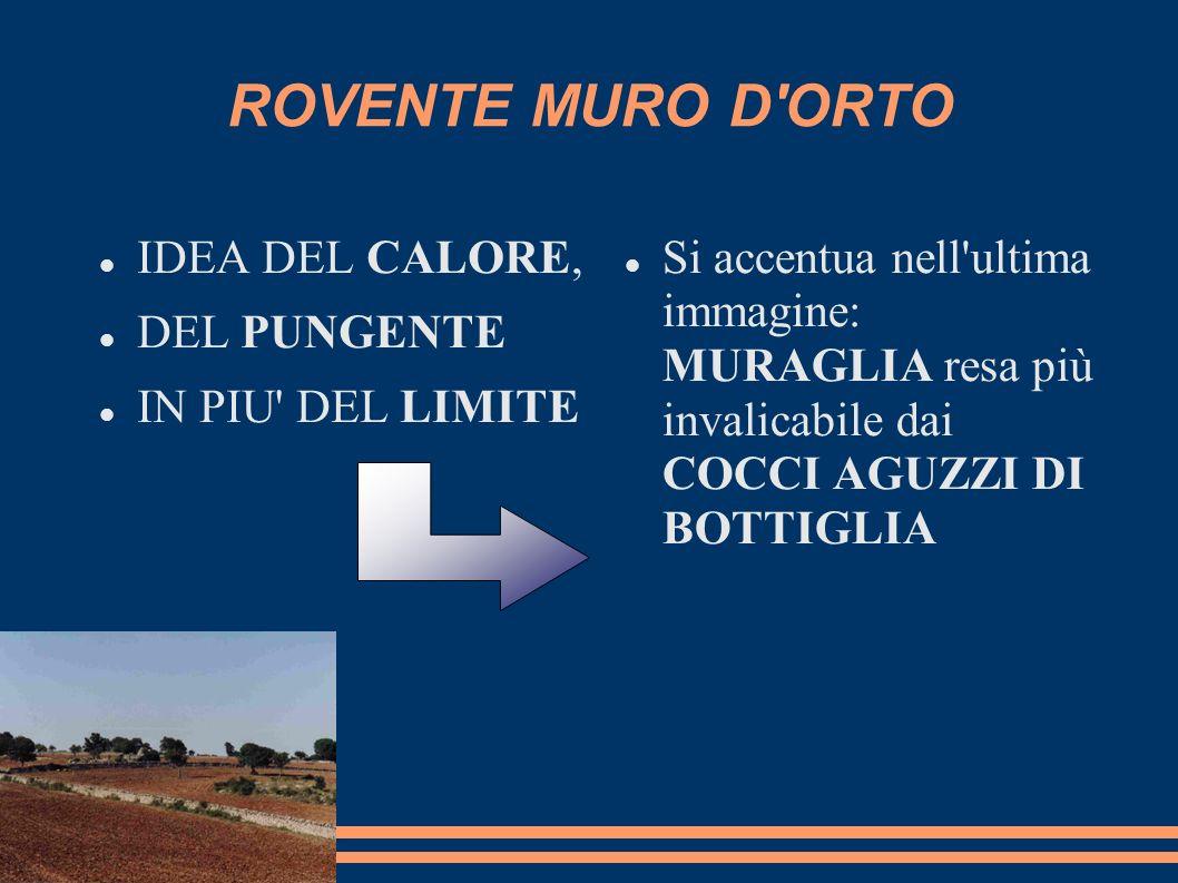 ROVENTE MURO D'ORTO IDEA DEL CALORE, DEL PUNGENTE IN PIU' DEL LIMITE Si accentua nell'ultima immagine: MURAGLIA resa più invalicabile dai COCCI AGUZZI