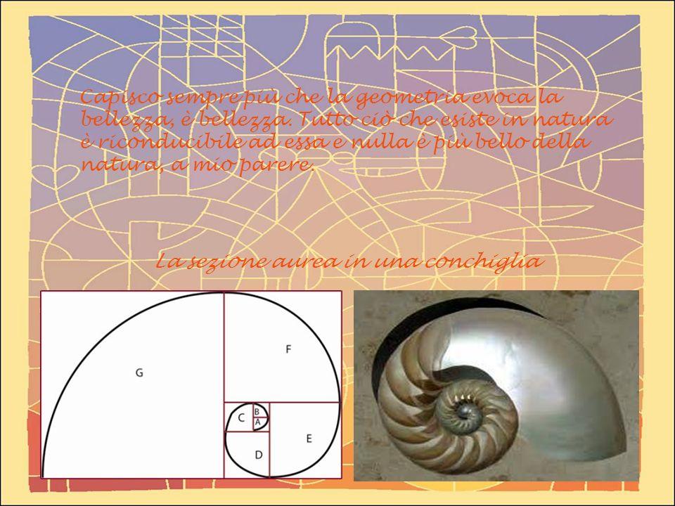 Capisco sempre più che la geometria evoca la bellezza, è bellezza. Tutto ciò che esiste in natura è riconducibile ad essa e nulla è più bello della na