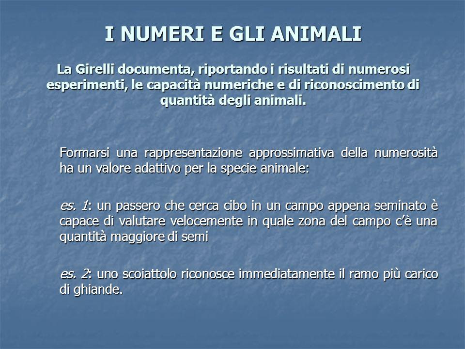 I NUMERI E GLI ANIMALI La Girelli documenta, riportando i risultati di numerosi esperimenti, le capacità numeriche e di riconoscimento di quantità deg