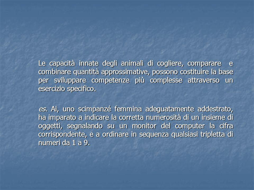 Le capacità innate degli animali di cogliere, comparare e combinare quantità approssimative, possono costituire la base per sviluppare competenze più