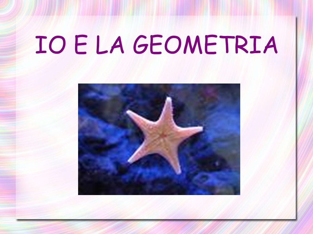 Racconterò la mia storia e la mia esperienza con la geometria facendo riflessioni sullinsegnamento di questa materia.