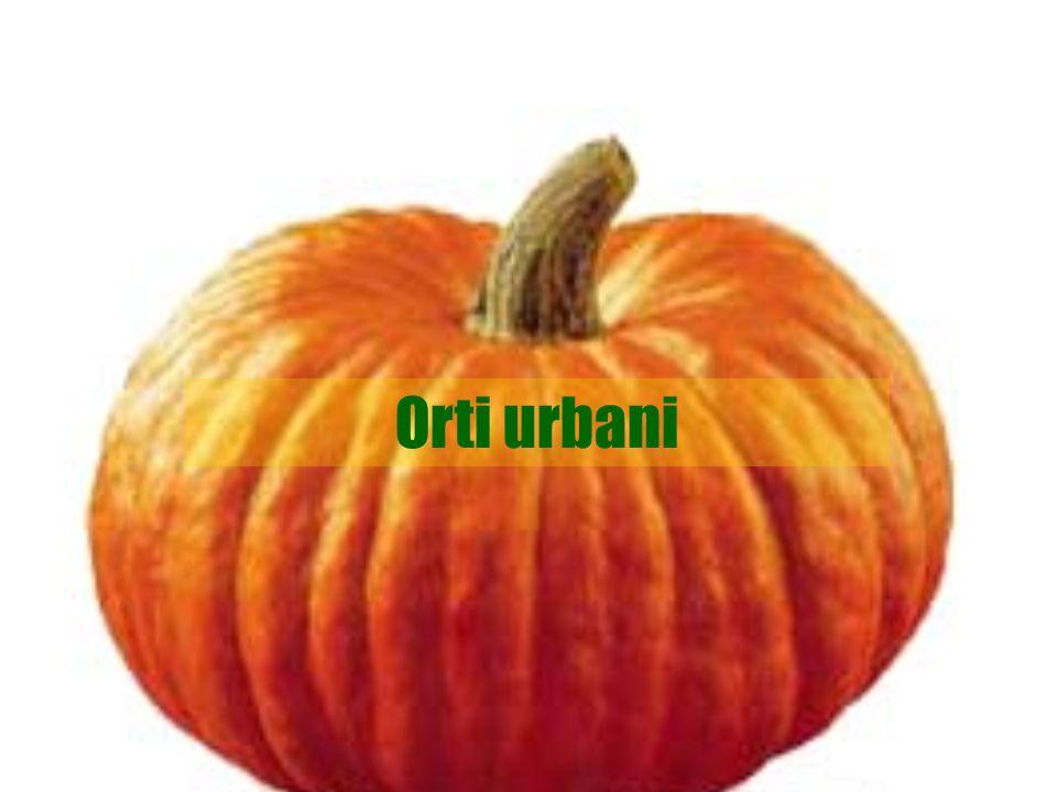 Orti urbani