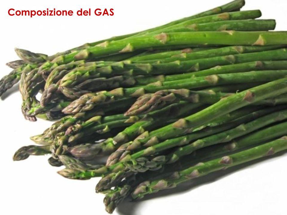 Composizione del GAS