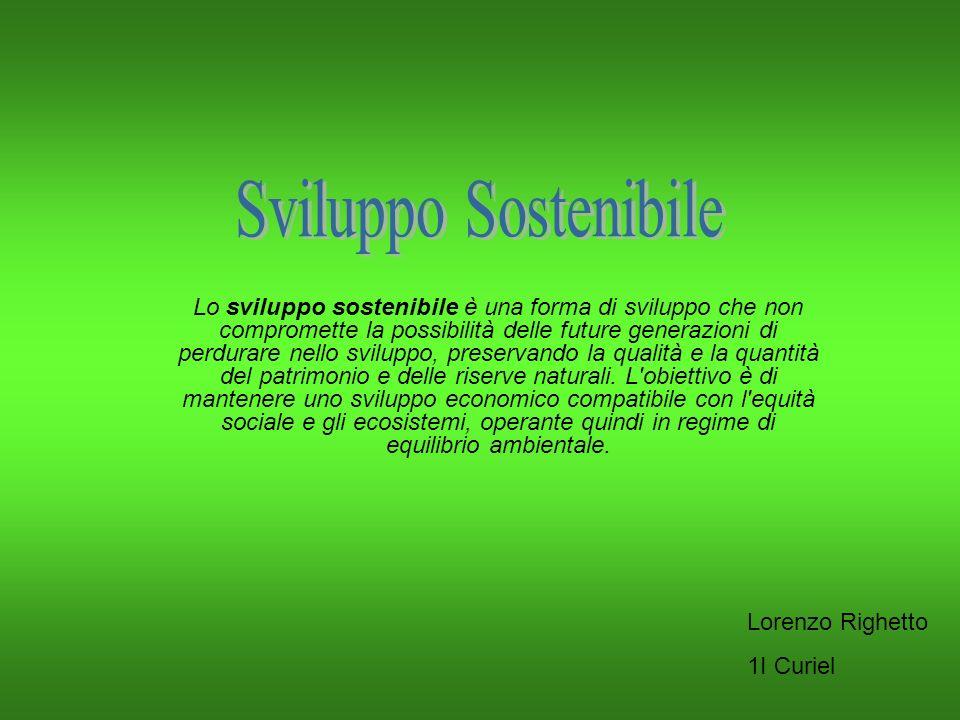 Lo sviluppo sostenibile è una forma di sviluppo che non compromette la possibilità delle future generazioni di perdurare nello sviluppo, preservando l