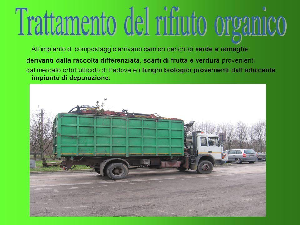Allimpianto di compostaggio arrivano camion carichi di verde e ramaglie derivanti dalla raccolta differenziata, scarti di frutta e verdura provenienti