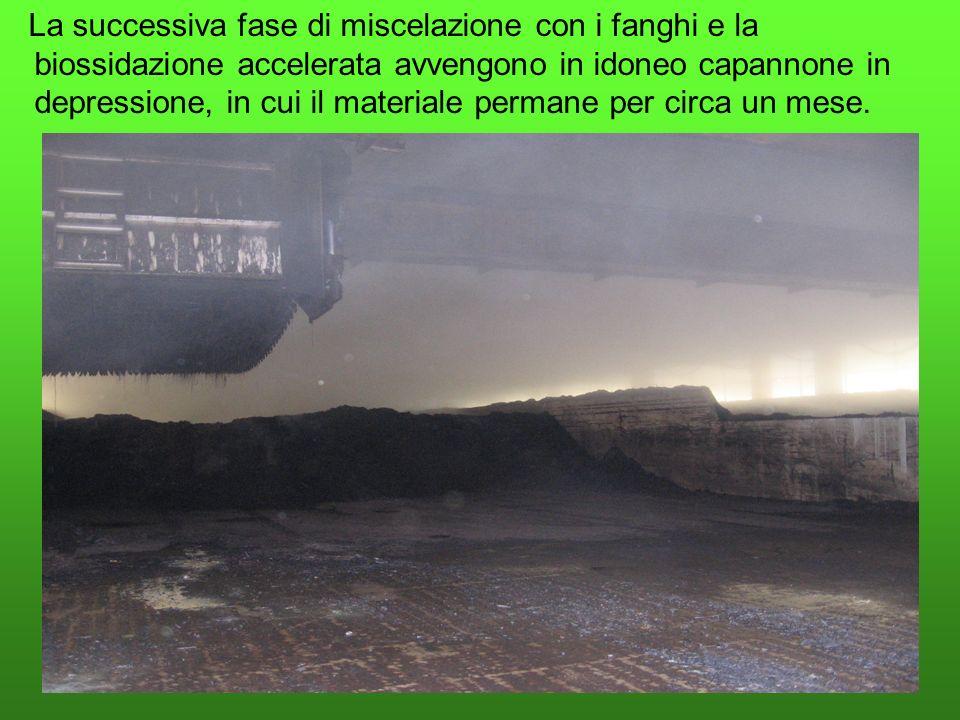 La successiva fase di miscelazione con i fanghi e la biossidazione accelerata avvengono in idoneo capannone in depressione, in cui il materiale perman