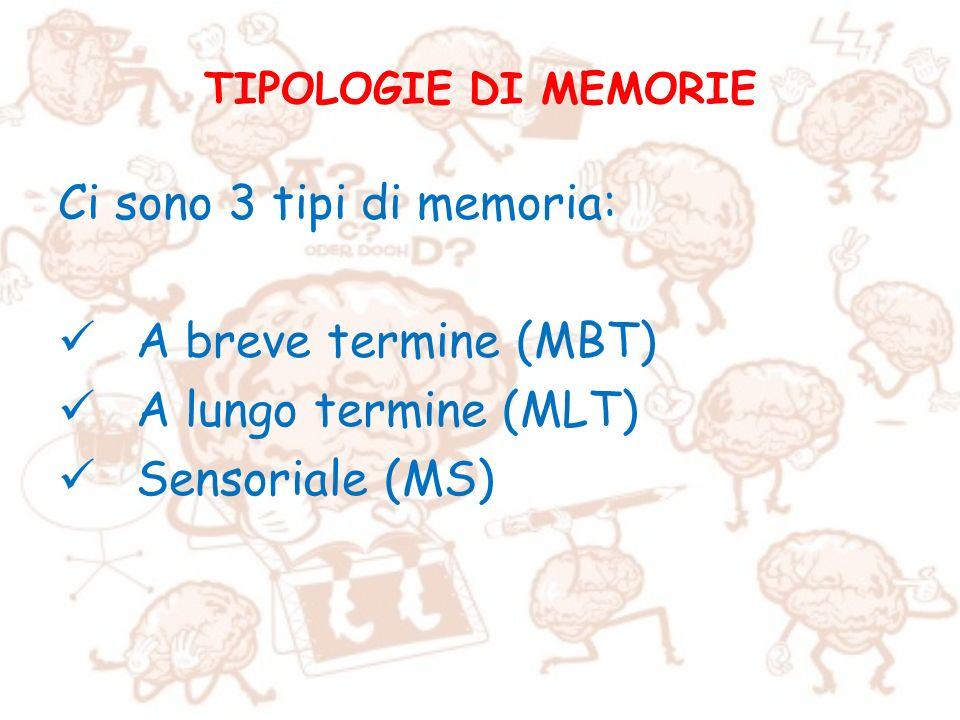 TIPOLOGIE DI MEMORIE Ci sono 3 tipi di memoria: A breve termine (MBT) A lungo termine (MLT) Sensoriale (MS)