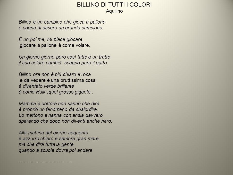 BILLINO DI TUTTI I COLORI Aquilino Billino è un bambino che gioca a pallone e sogna di essere un grande campione.