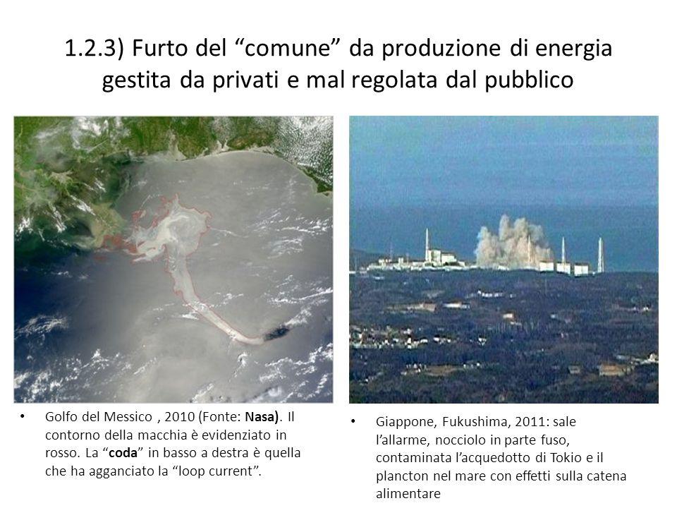 1.2.3) Furto del comune da produzione di energia gestita da privati e mal regolata dal pubblico Golfo del Messico, 2010 (Fonte: Nasa). Il contorno del