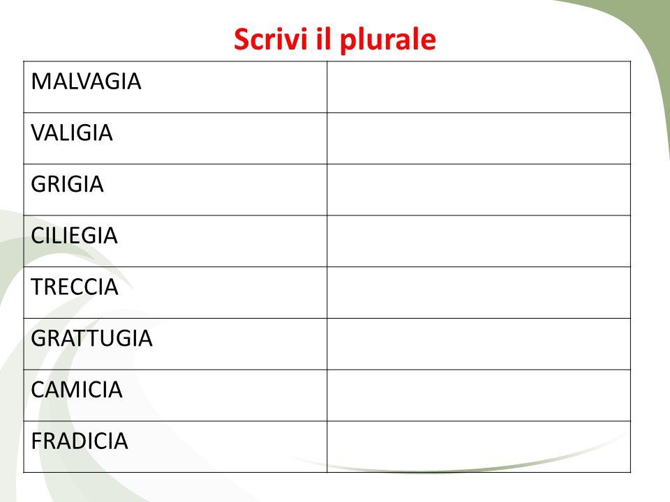 Scrivi il plurale FRECCIA LANCIA PROVINCIA MANCIA ARANCIA PIOGGIA SPIAGGIA