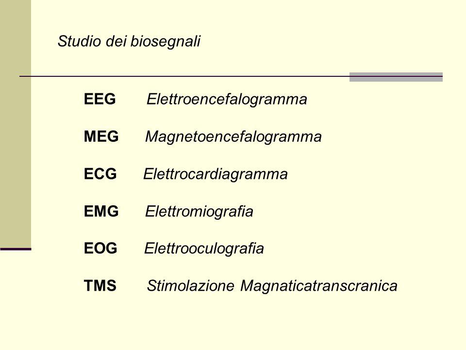 Fisiologia umana: provenienza dei segnali EEG Il neurone : Il neurone è una cellula eccitabile in grado di ricevere, elaborare e trasmettere informazioni alle cellule adiacenti per mezzo di impulsi (potenziali dazione o spike).