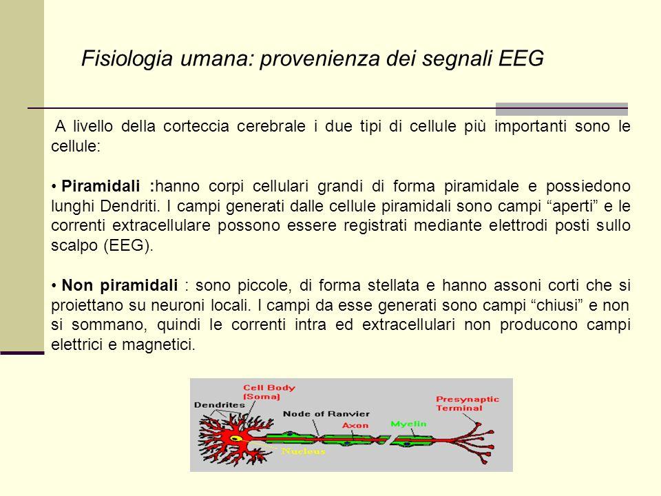I potenziali rilevabili tramite EEG sono quelli associati a correnti all interno dell encefalo che fluiscono perpendicolarmente rispetto allo scalpo.