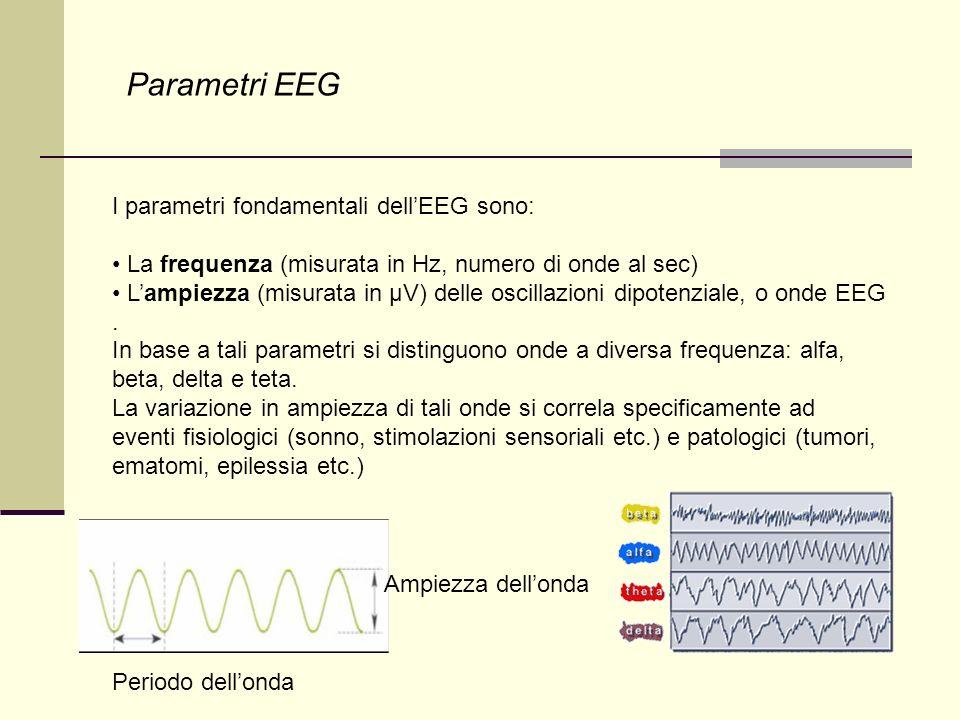 Studio dell EEG L elettroencefalogramma (EEG) registra l attività elettrica cerebrale tramite elettrodi di superficie posizionati sulla testa secondo uno schema fisso (standard 10-20).