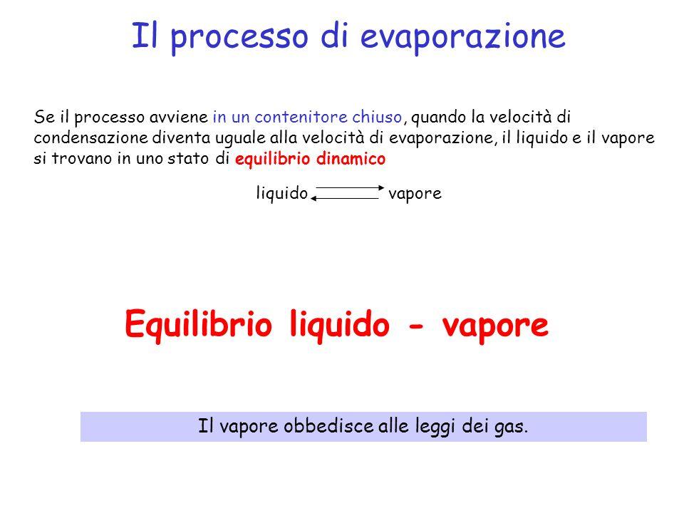 Il processo di evaporazione Se il processo avviene in un contenitore chiuso, quando la velocità di condensazione diventa uguale alla velocità di evaporazione, il liquido e il vapore si trovano in uno stato di equilibrio dinamico liquido vapore Equilibrio liquido - vapore Il vapore obbedisce alle leggi dei gas.