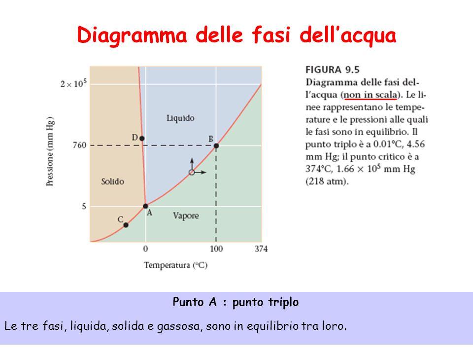 Diagramma delle fasi dellacqua Punto A : punto triplo Le tre fasi, liquida, solida e gassosa, sono in equilibrio tra loro.