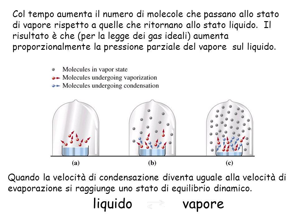 Col tempo aumenta il numero di molecole che passano allo stato di vapore rispetto a quelle che ritornano allo stato liquido.