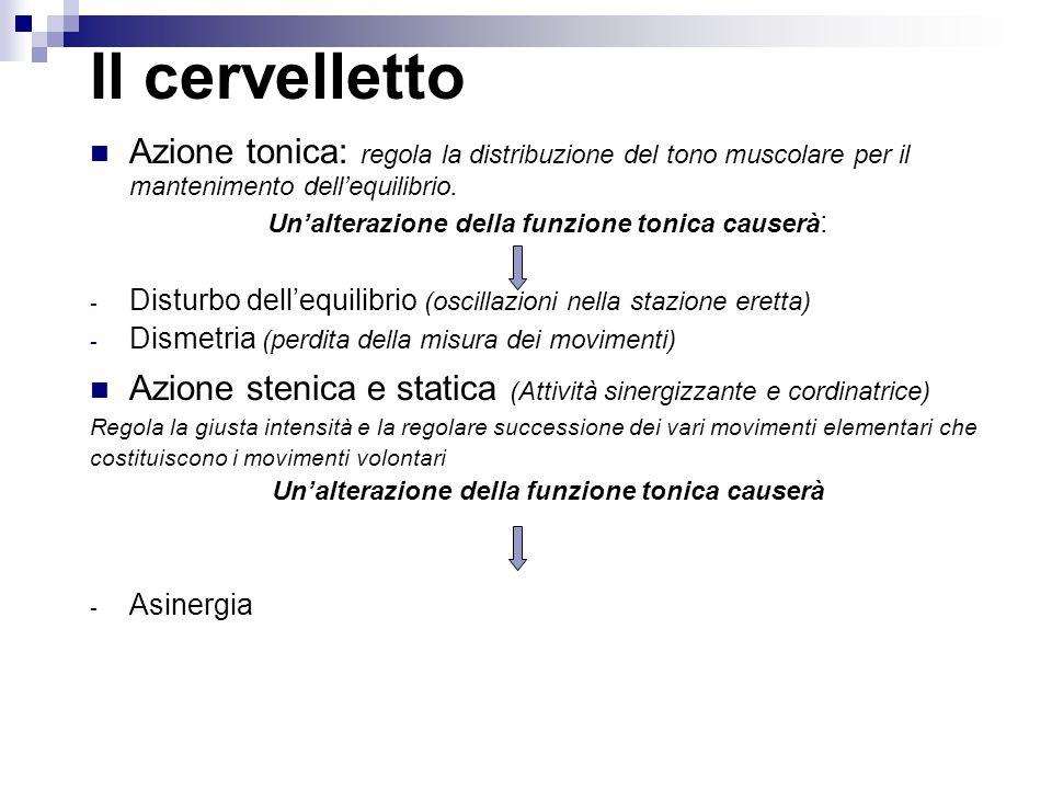 Il cervelletto Azione tonica: regola la distribuzione del tono muscolare per il mantenimento dellequilibrio. Unalterazione della funzione tonica cause