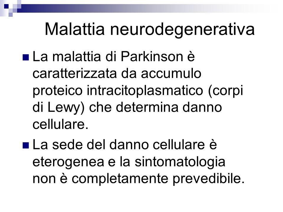 Malattia neurodegenerativa La malattia di Parkinson è caratterizzata da accumulo proteico intracitoplasmatico (corpi di Lewy) che determina danno cell