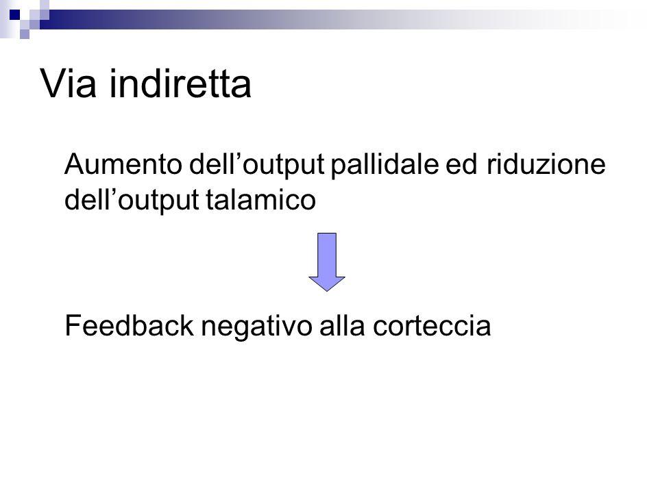 Via indiretta Aumento delloutput pallidale ed riduzione delloutput talamico Feedback negativo alla corteccia