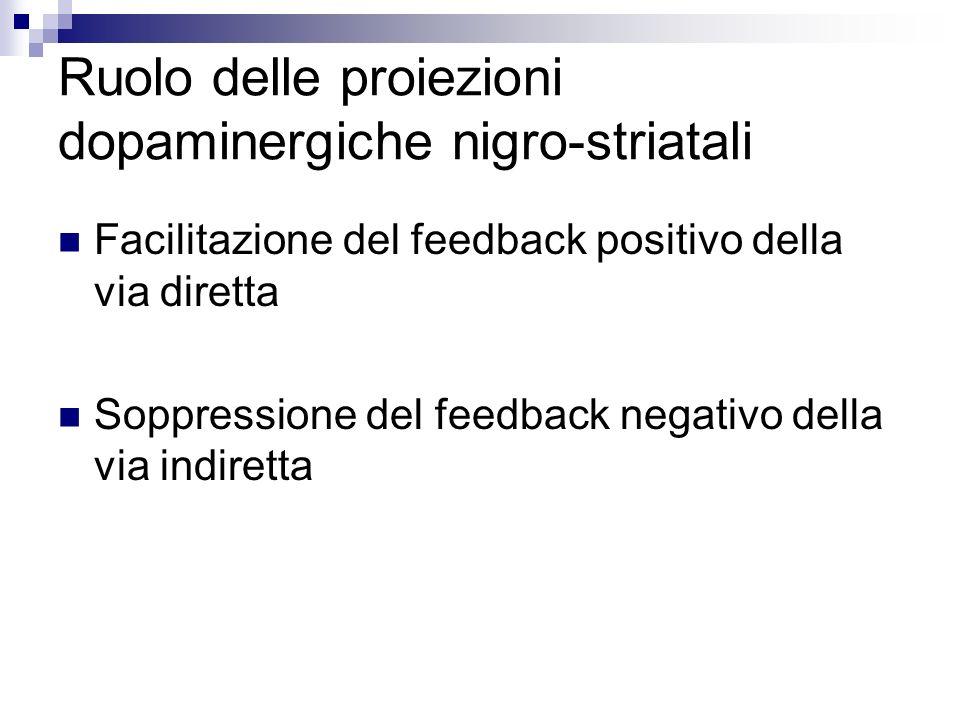 Ruolo delle proiezioni dopaminergiche nigro-striatali Facilitazione del feedback positivo della via diretta Soppressione del feedback negativo della v