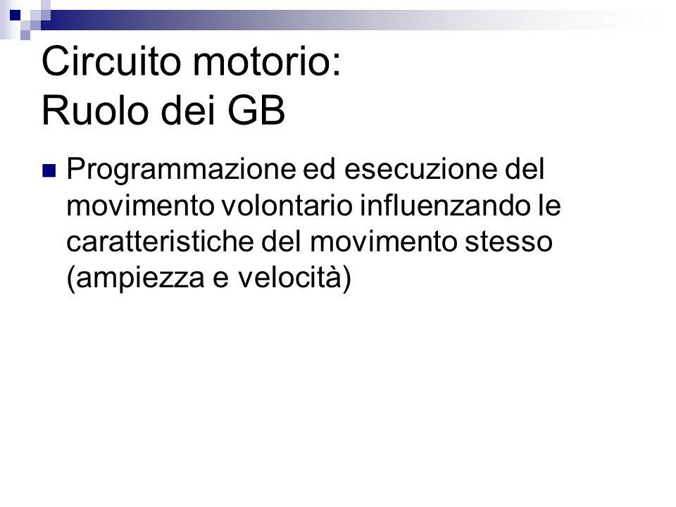 Circuito motorio: Ruolo dei GB Programmazione ed esecuzione del movimento volontario influenzando le caratteristiche del movimento stesso (ampiezza e