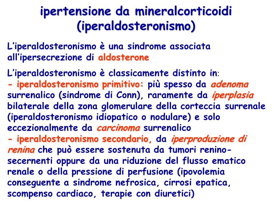 ipertensione da mineralcorticoidi (iperaldosteronismo) - iperaldosteronismo primitivo: adenoma iperplasia carcinoma Liperaldosteronismo è classicament