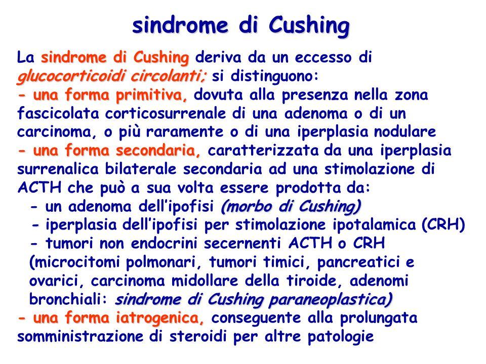 sindrome di Cushing glucocorticoidi circolanti; La sindrome di Cushing deriva da un eccesso di glucocorticoidi circolanti; si distinguono: - una forma