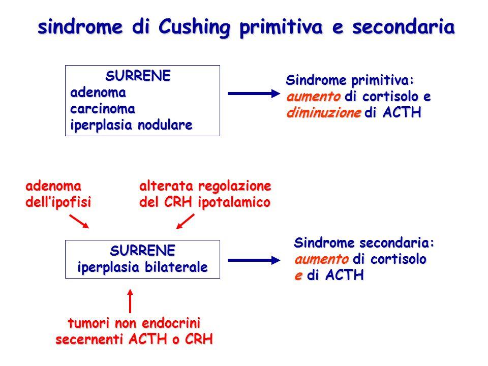 sindrome di Cushing primitiva e secondaria SURRENE adenoma carcinoma iperplasia nodulare SURRENE adenoma carcinoma iperplasia nodulare Sindrome primit