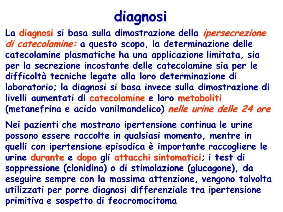 diagnosi diagnosiipersecrezione di catecolamine: catecolaminemetaboliti nelle urine delle 24 ore La diagnosi si basa sulla dimostrazione della ipersec