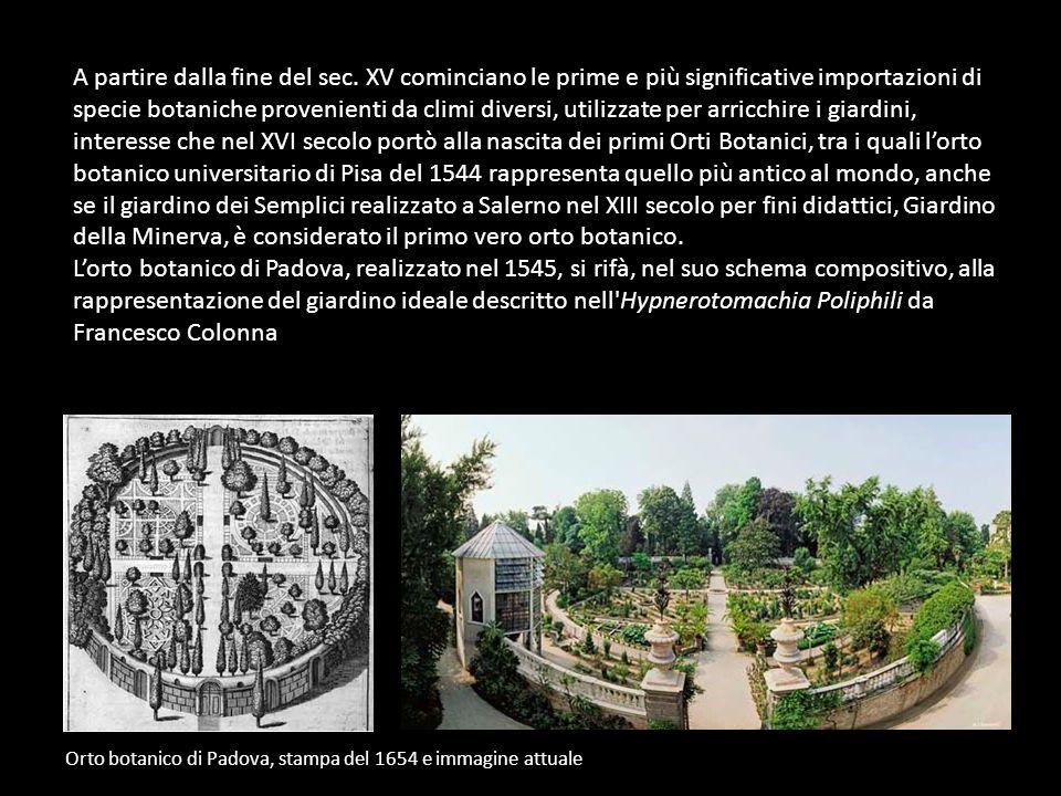 A partire dalla fine del sec. XV cominciano le prime e più significative importazioni di specie botaniche provenienti da climi diversi, utilizzate per