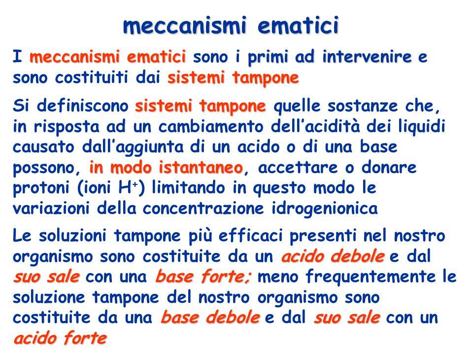 meccanismi ematici primi ad intervenire sistemi tampone I meccanismi ematici sono i primi ad intervenire e sono costituiti dai sistemi tampone meccani