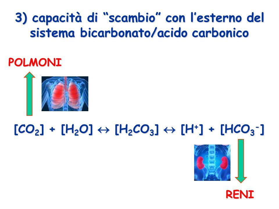 3) capacità di scambio con lesterno del sistema bicarbonato/acido carbonico [CO 2 ] + [H 2 O] [H 2 CO 3 ] [H + ] + [HCO 3 - ] POLMONI RENI