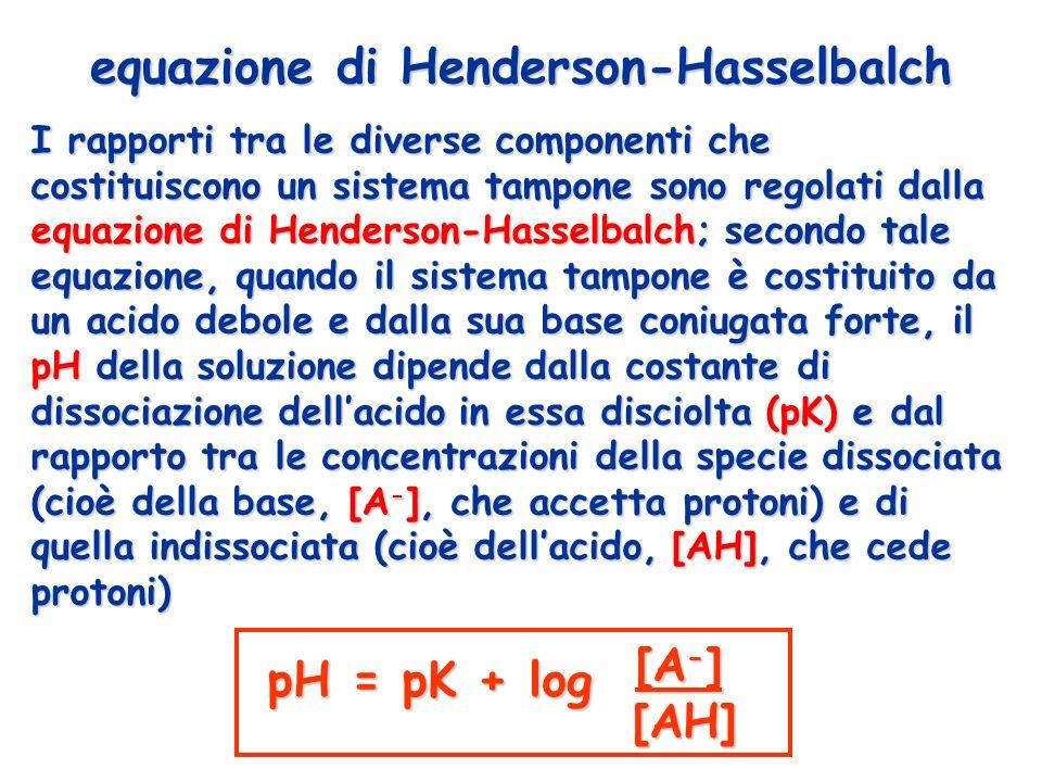 I rapporti tra le diverse componenti che costituiscono un sistema tampone sono regolati dalla equazione di Henderson-Hasselbalch; secondo tale equazio