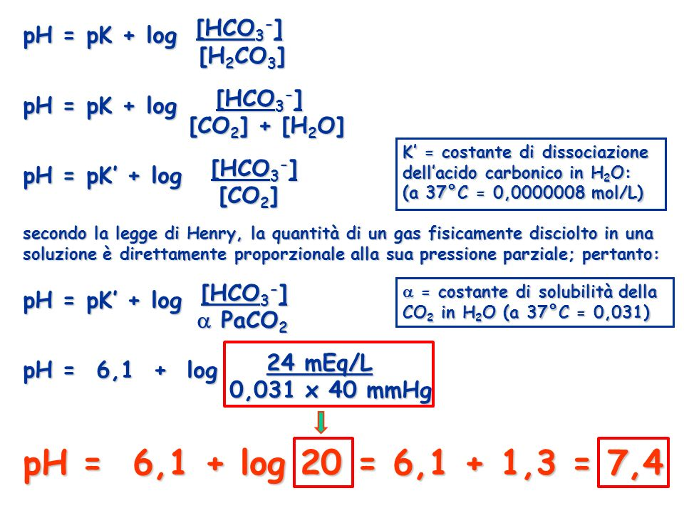 pH = pK + log [HCO 3 - ] [H 2 CO 3 ] [H 2 CO 3 ] pH = pK + log [HCO 3 - ] [CO 2 ] + [H 2 O] [CO 2 ] + [H 2 O] pH = pK + log [HCO 3 - ] [CO 2 ] [CO 2 ]
