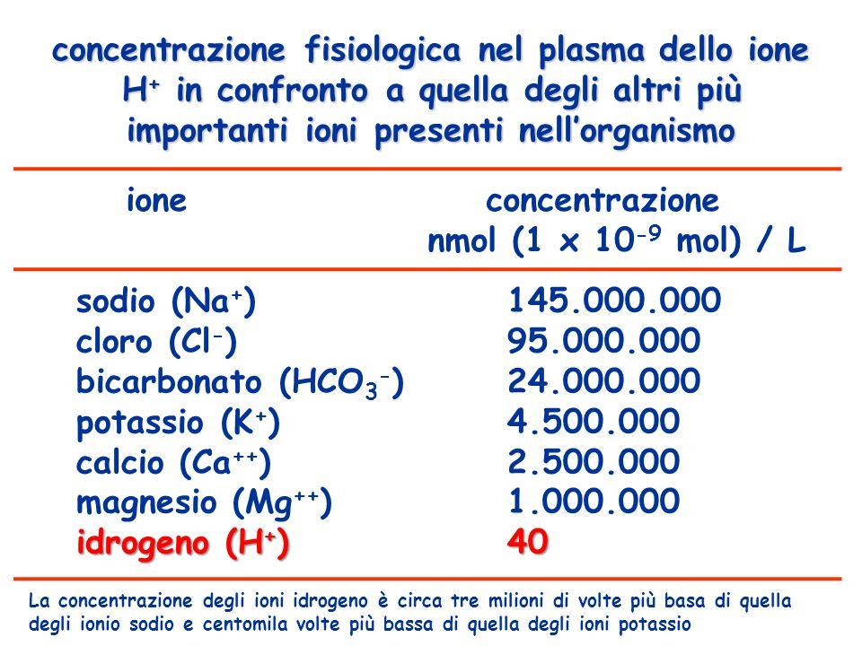 2) localizzazione dei sistemi tampone tampone:acido carbonio / bicarbonato fosfatiproteineHb compartimento: fluido interstizialeX plasmaXXX eritrocitiXXX celluleXXX ossaXX