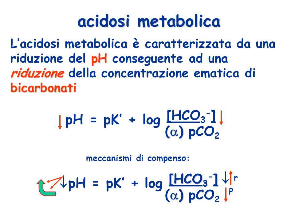 pH riduzione bicarbonati Lacidosi metabolica è caratterizzata da una riduzione del pH conseguente ad una riduzione della concentrazione ematica di bic