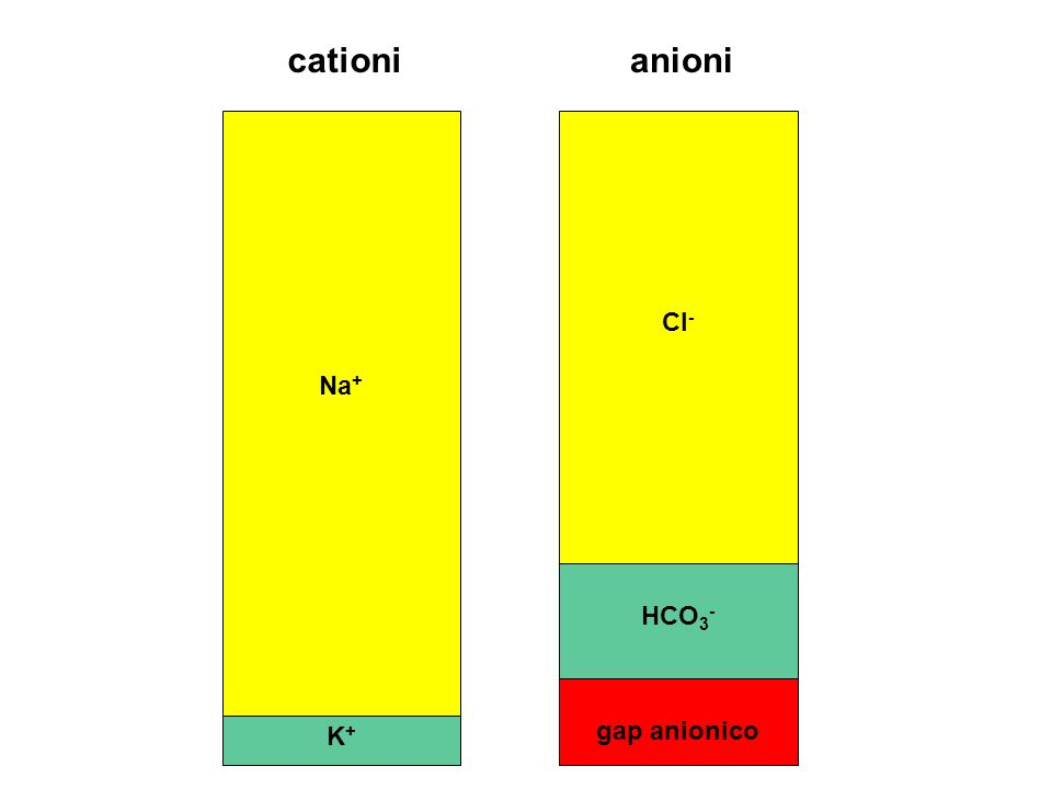 K+K+ Na + HCO 3 - Cl - gap anionico anionicationi