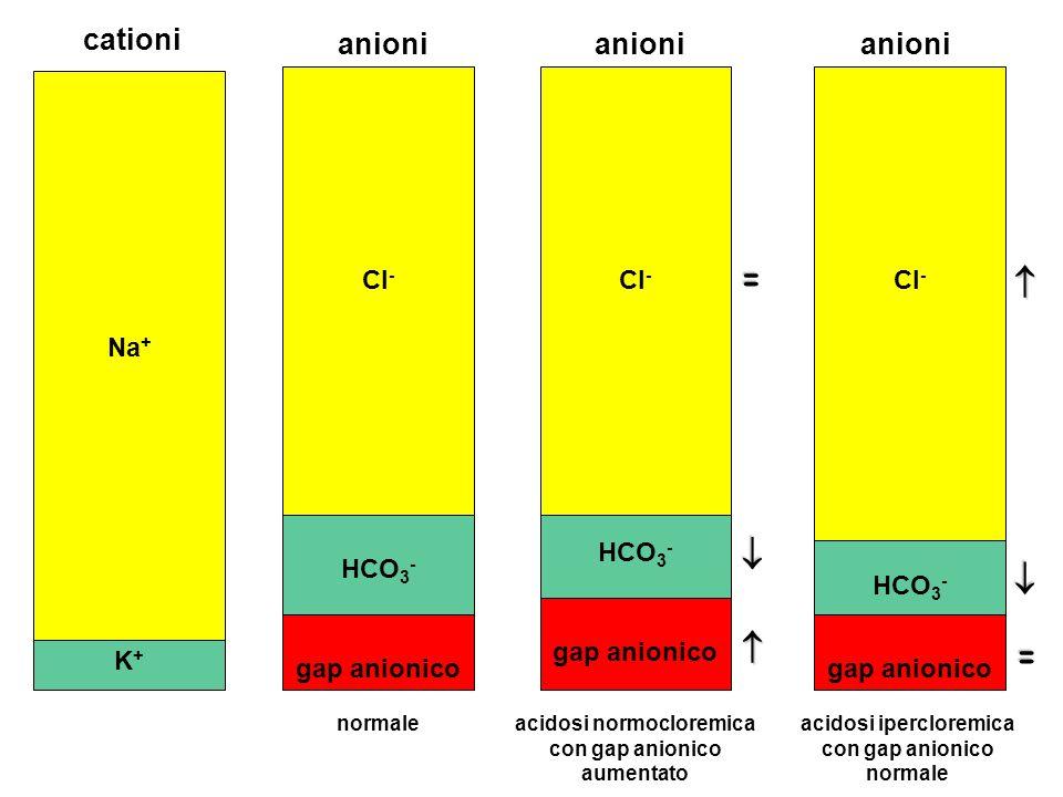 K+K+ Na + HCO 3 - Cl - gap anionico anioni cationi HCO 3 - Cl - gap anionico HCO 3 - Cl - gap anionico anioni acidosi normocloremica con gap anionico