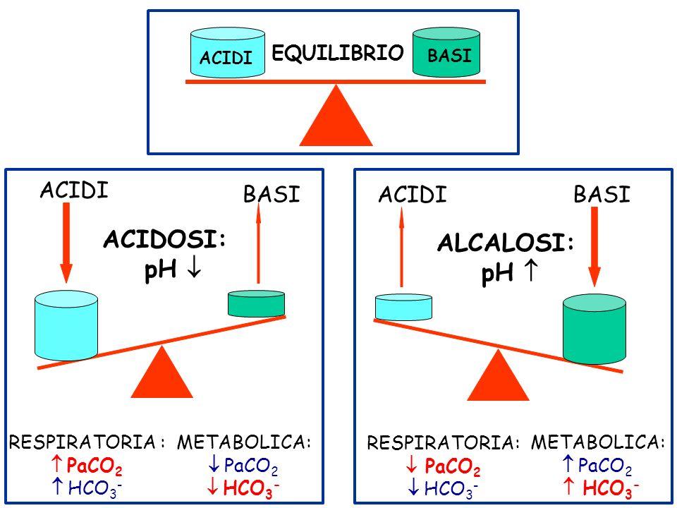 ACIDOSI: pH ACIDI BASI RESPIRATORIA : PaCO 2 HCO 3 - METABOLICA: PaCO 2 HCO 3 - RESPIRATORIA: PaCO 2 HCO 3 - METABOLICA: PaCO 2 HCO 3 - ALCALOSI: pH A