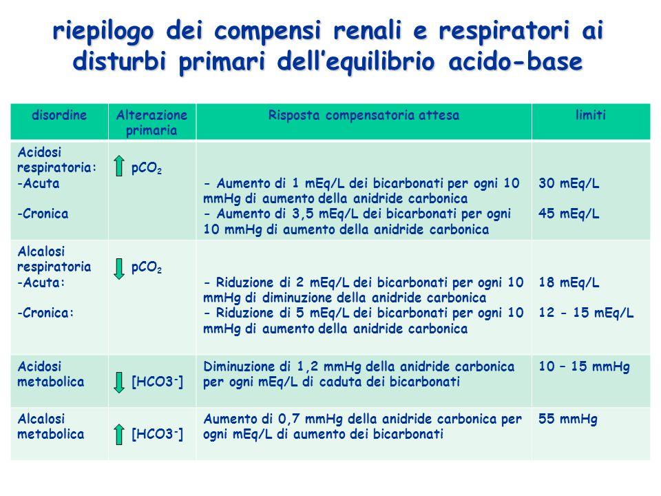 disordineAlterazione primaria Risposta compensatoria attesalimiti Acidosi respiratoria: -Acuta -Cronica pCO 2 - Aumento di 1 mEq/L dei bicarbonati per