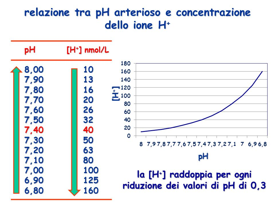 disordineAlterazione primaria Risposta compensatoria attesalimiti Acidosi respiratoria: -Acuta -Cronica pCO 2 - Aumento di 1 mEq/L dei bicarbonati per ogni 10 mmHg di aumento della anidride carbonica - Aumento di 3,5 mEq/L dei bicarbonati per ogni 10 mmHg di aumento della anidride carbonica 30 mEq/L 45 mEq/L Alcalosi respiratoria -Acuta: -Cronica: pCO 2 - Riduzione di 2 mEq/L dei bicarbonati per ogni 10 mmHg di diminuzione della anidride carbonica - Riduzione di 5 mEq/L dei bicarbonati per ogni 10 mmHg di aumento della anidride carbonica 18 mEq/L 12 - 15 mEq/L Acidosi metabolica [HCO3 - ] Diminuzione di 1,2 mmHg della anidride carbonica per ogni mEq/L di caduta dei bicarbonati 10 – 15 mmHg Alcalosi metabolica [HCO3 - ] Aumento di 0,7 mmHg della anidride carbonica per ogni mEq/L di aumento dei bicarbonati 55 mmHg riepilogo dei compensi renali e respiratori ai disturbi primari dellequilibrio acido-base