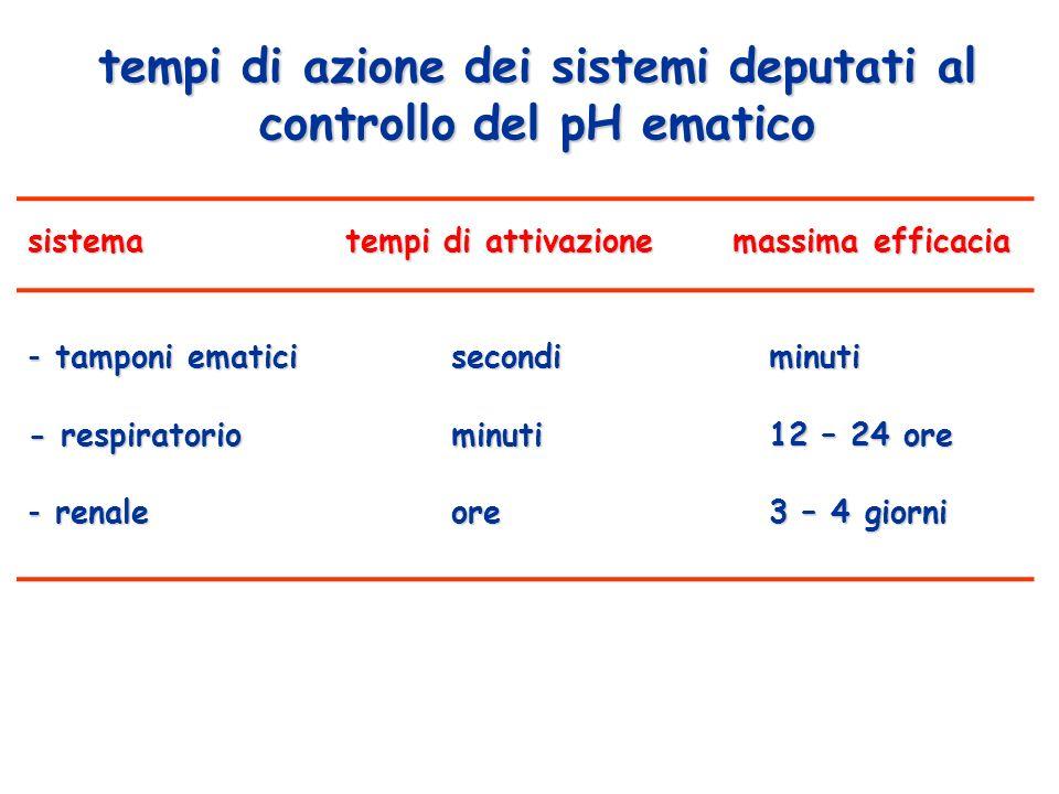 tempi di azione dei sistemi deputati al controllo del pH ematico sistematempi di attivazione massima efficacia - tamponi ematici secondiminuti - respi