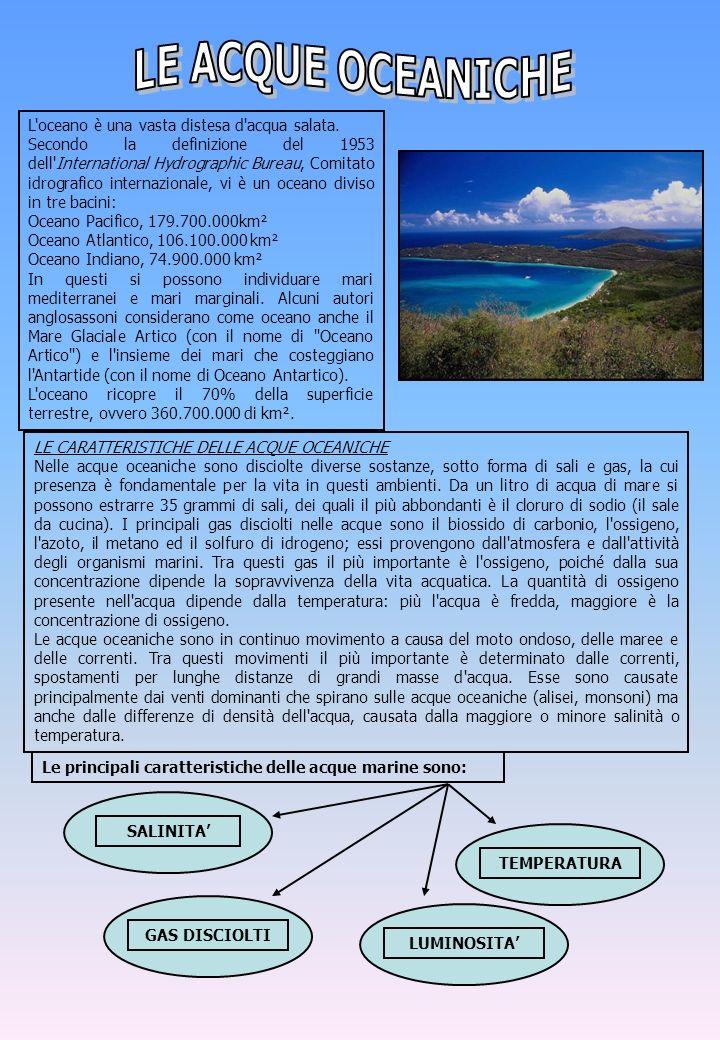 L'oceano è una vasta distesa d'acqua salata. Secondo la definizione del 1953 dell'International Hydrographic Bureau, Comitato idrografico internaziona