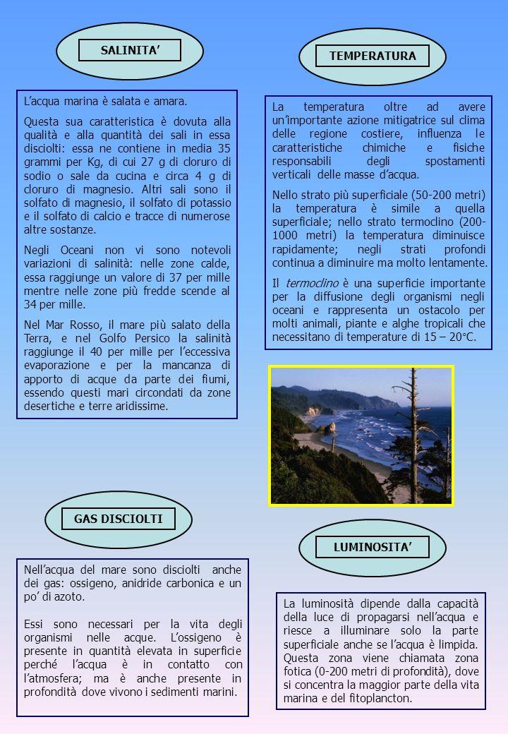 Lacqua marina è salata e amara. Questa sua caratteristica è dovuta alla qualità e alla quantità dei sali in essa disciolti: essa ne contiene in media
