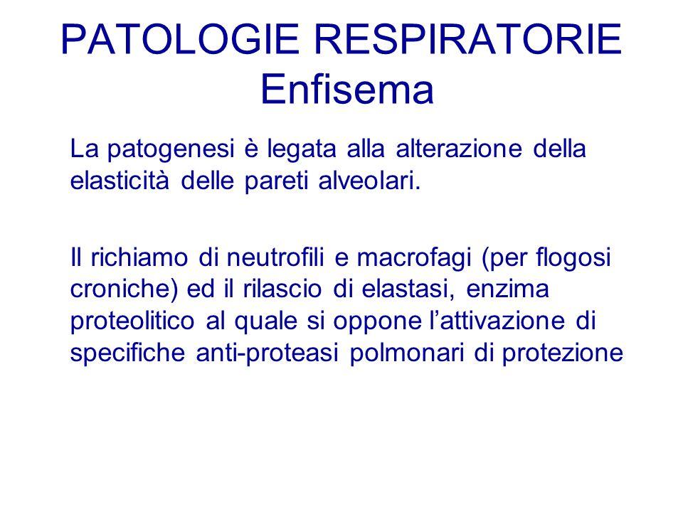 La patogenesi è legata alla alterazione della elasticità delle pareti alveolari. Il richiamo di neutrofili e macrofagi (per flogosi croniche) ed il ri