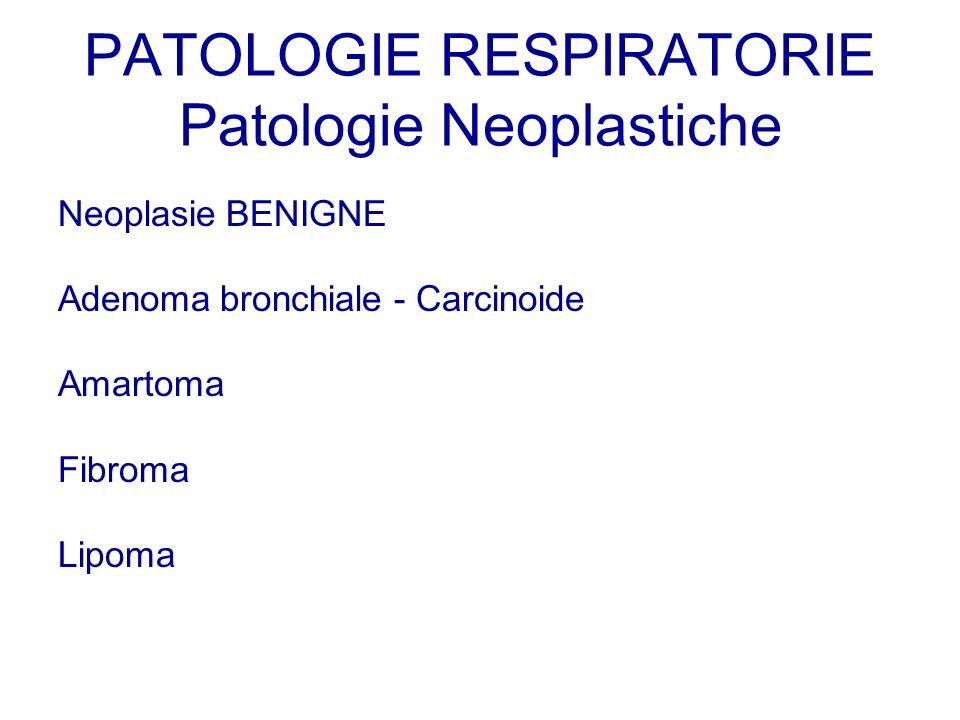 Neoplasie BENIGNE Adenoma bronchiale - Carcinoide Amartoma Fibroma Lipoma PATOLOGIE RESPIRATORIE Patologie Neoplastiche