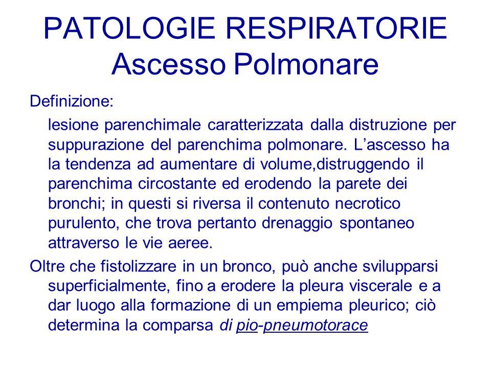 PATOLOGIE RESPIRATORIE Ascesso Polmonare Definizione: lesione parenchimale caratterizzata dalla distruzione per suppurazione del parenchima polmonare.