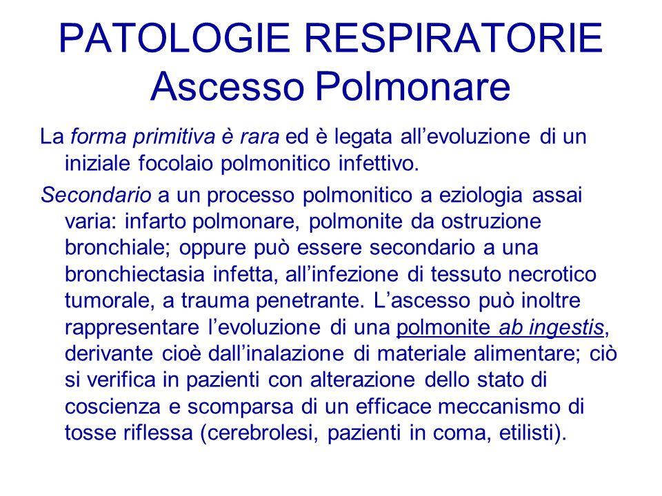 PATOLOGIE RESPIRATORIE Ascesso Polmonare La forma primitiva è rara ed è legata allevoluzione di un iniziale focolaio polmonitico infettivo. Secondario